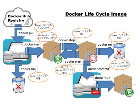 Image:Computer/20150719DockerLifeCycleImage.png